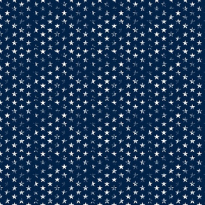 Small Distressed White Stars on Navy Blue