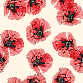 Watercolor Poppies Tousled
