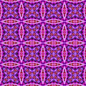 Crazy Purple Checkers