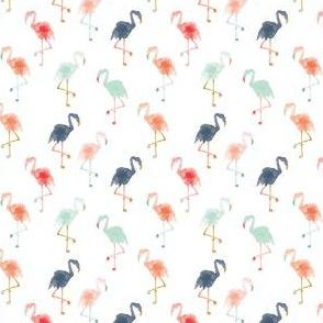 IBD Flamingos A