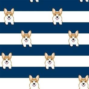 corgi stripes navy