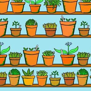 Green house Plant Pots - Blue