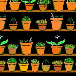 Green house Plant Pots - Black