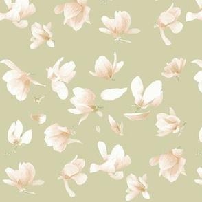 Tulip Magnolia (Ecru)