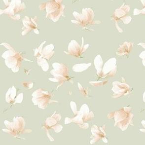 Tulip Magnolia (Light Sage)