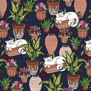 Cats and Planters