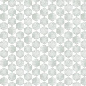 Minimal Gray Green  Hexagon Tiled Print