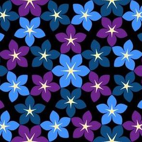 07473388 : U65floral : spoonflower0237