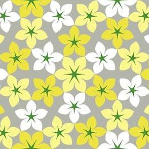 07473527 : U65floral : spoonflower0314