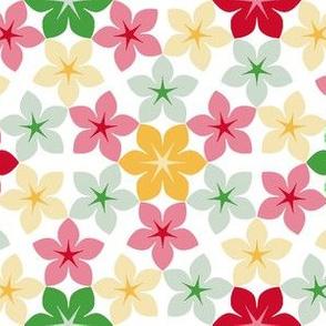07474650 : U65floral : christmascolor