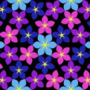 07474933 : U65 flowers 3 : bobpalette