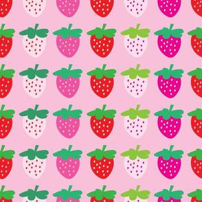 aloha strawberries 2 inch on pink