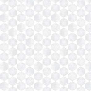 Silver Gray  and White Hexagonal Pattern