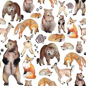 all woodland animals