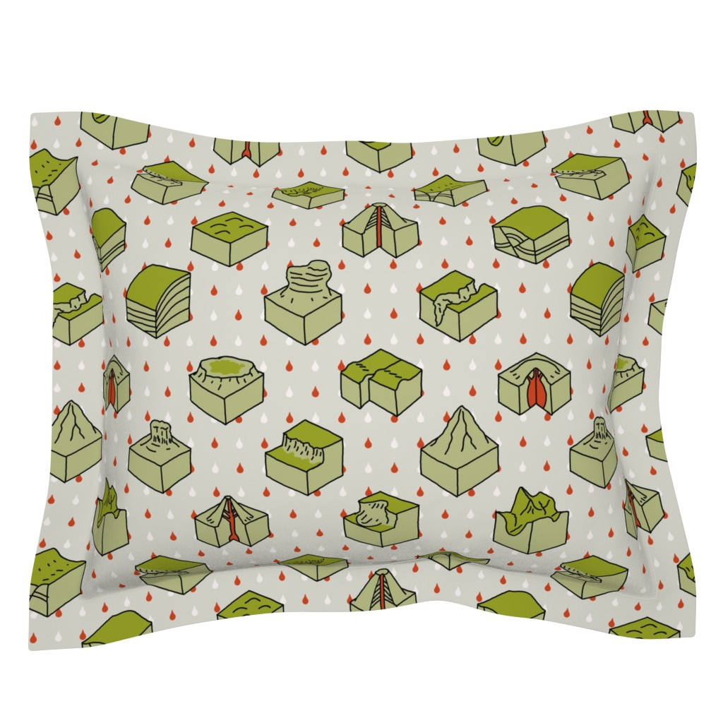 Sebright Pillow Sham featuring geological diagrams by mongiesama