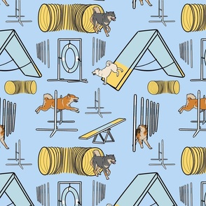 Simple Shiba Inu agility dogs - blue