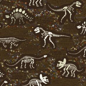 Dinosaur Fossils - Brown