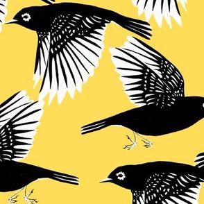 Waxeyes (yellow)