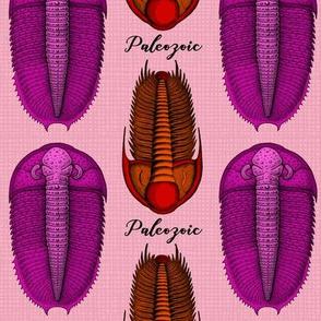 Paleozoic and Pink