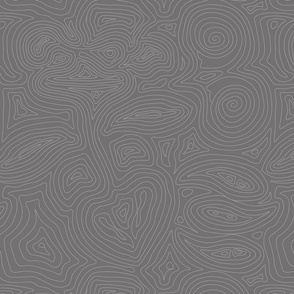 Geology Fossil Lines - Modern Gray