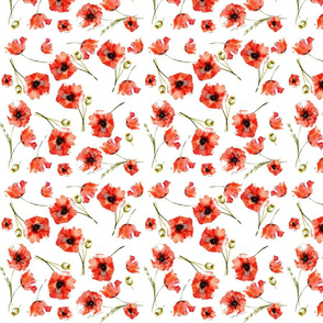 Scattered poppies