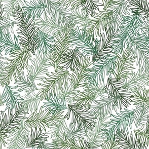 Pine leaves green