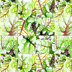 Beet greens 2