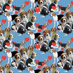 Beagles and Hearts