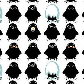 Baby Ravens