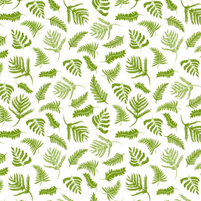 Natural World green and white fern toss pattern