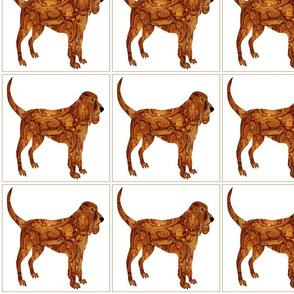 Dog Daze Paisley Brown