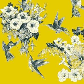 Primrose Yellow  & Gray Humming Bird