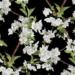 Blossom-MIDNIGHT-Seamless_3600x3600