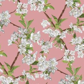 Blossom-DUSK-Seamless_3600x3600