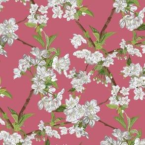 Blossom-SPRING-Seamless_3600x3600