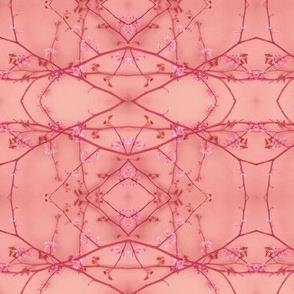 Horizontal Redbud (Rose)