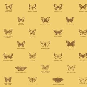 butterfly alphabet - serene wheat
