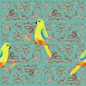 Orange-bellied Parrot-Eucalypt blue