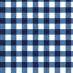 gingham blue and white small
