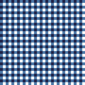 gingham blue and white, small
