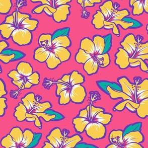 7521391-hibiscus-by-evacchi