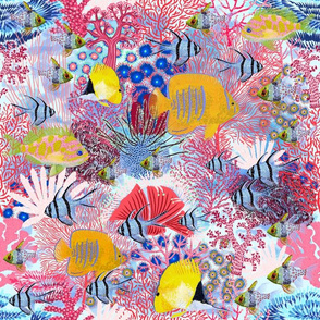 "Save Coral Reef 14"""