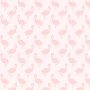 Flamingos on Pale Pink, Tropical Birds, Coastal Florida, Subtle Monochrome Pale Pink
