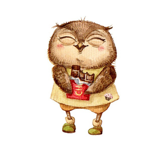 Cute  Owl with Chocolate bar  Pillow White