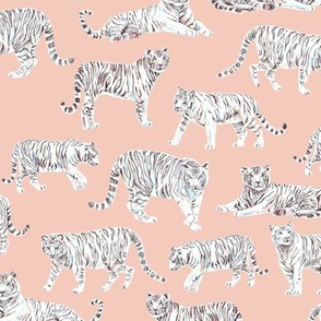 White Bengal Tiger | Peach Background