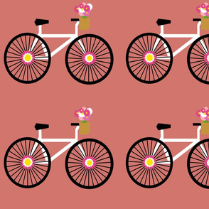 Rose bicycles