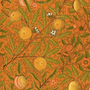 Fruit ~ William Morris ~ Citrus on Pumpkin Spice