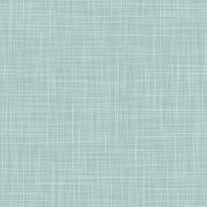 Solid Linen  - D Turquoise