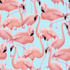 Flamingo (blue)