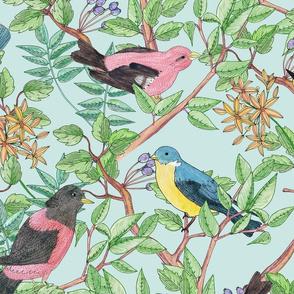 Songbird (blue)